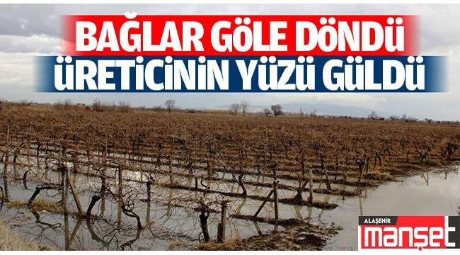Alaşehir'de Yağışlar Çiftçinin Yüzünü Güldürdü