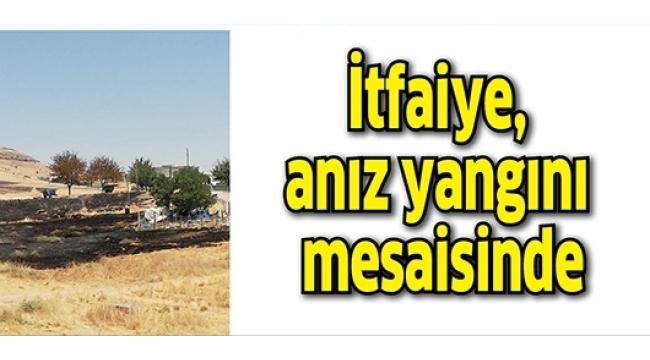 Alaşehir'de Anız Yangını!